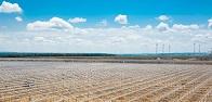 ФСК ЕЭС обеспечила выдачу 75 МВт мощности одному из крупнейших тепличных комплексов Северного Кавказа