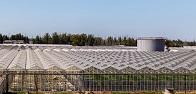 Федеральная сетевая компания обеспечила возможность передачи 84,6 МВт мощности тепличному комплексу «Ботаника» в Волгоградской области