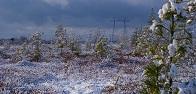 «Россети ФСК ЕЭС» модернизировала ЛЭП, обеспечивающую выдачу мощности крупнейшей теплоэлектростанции России – Сургутской ГРЭС-2